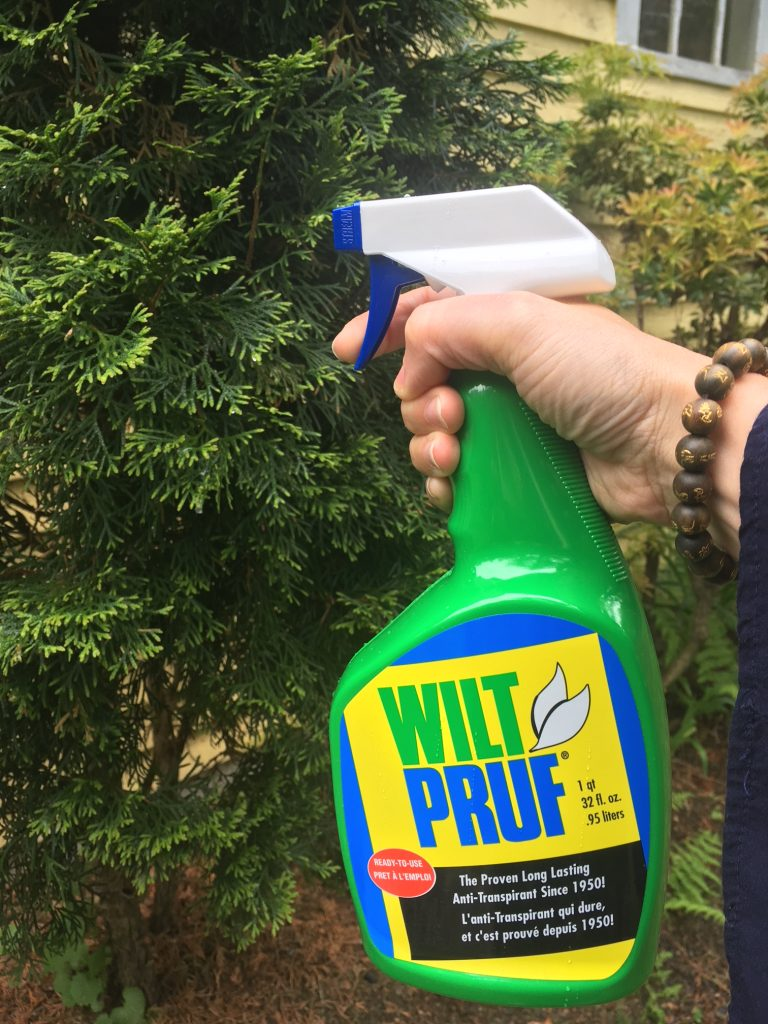 how-to-use-wilt-pruf