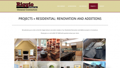 Riggio-construction-website-design
